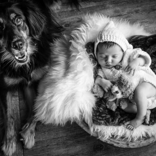 Barbara Fabbri Fotografa Matrimonialista Professionista Faenza, New Born